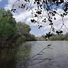 Amudarya State Reserve