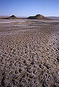 Badghyz State Reserve